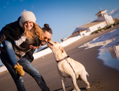 Preboda Cabopino: Lara&Juanki